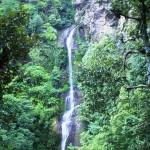 Potters Hill Resorts Shimla