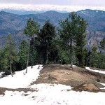 Snow At Kufri
