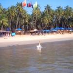 Palolem Beach
