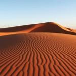 Yokoso-Thar-Desert-Tours-Jaisalmer_140714_image