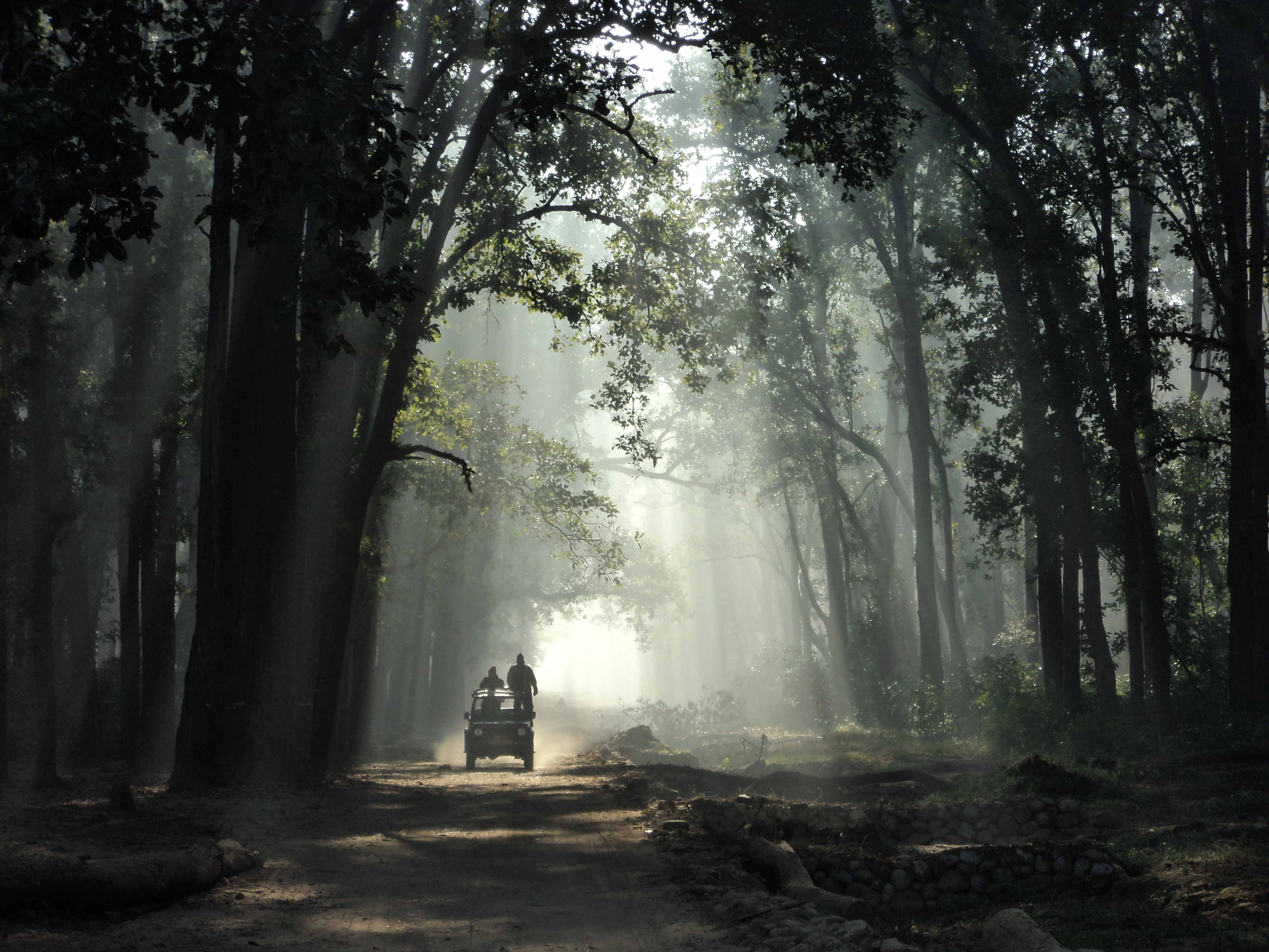 Jim_Corbett_National_Park_(India)