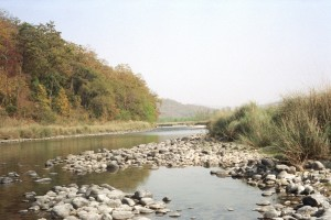River_in_Corbett_National_Park