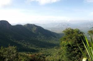 Tirumala_Overview