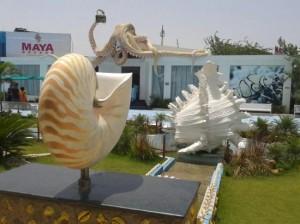 india-seashell-museum