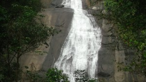 Thusharagiri_waterfall