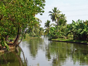 backwaters_(2068040007)