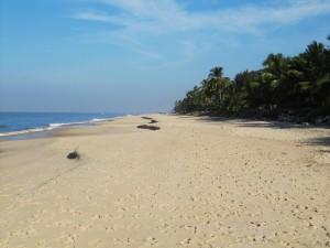 Alappuzha_Beach