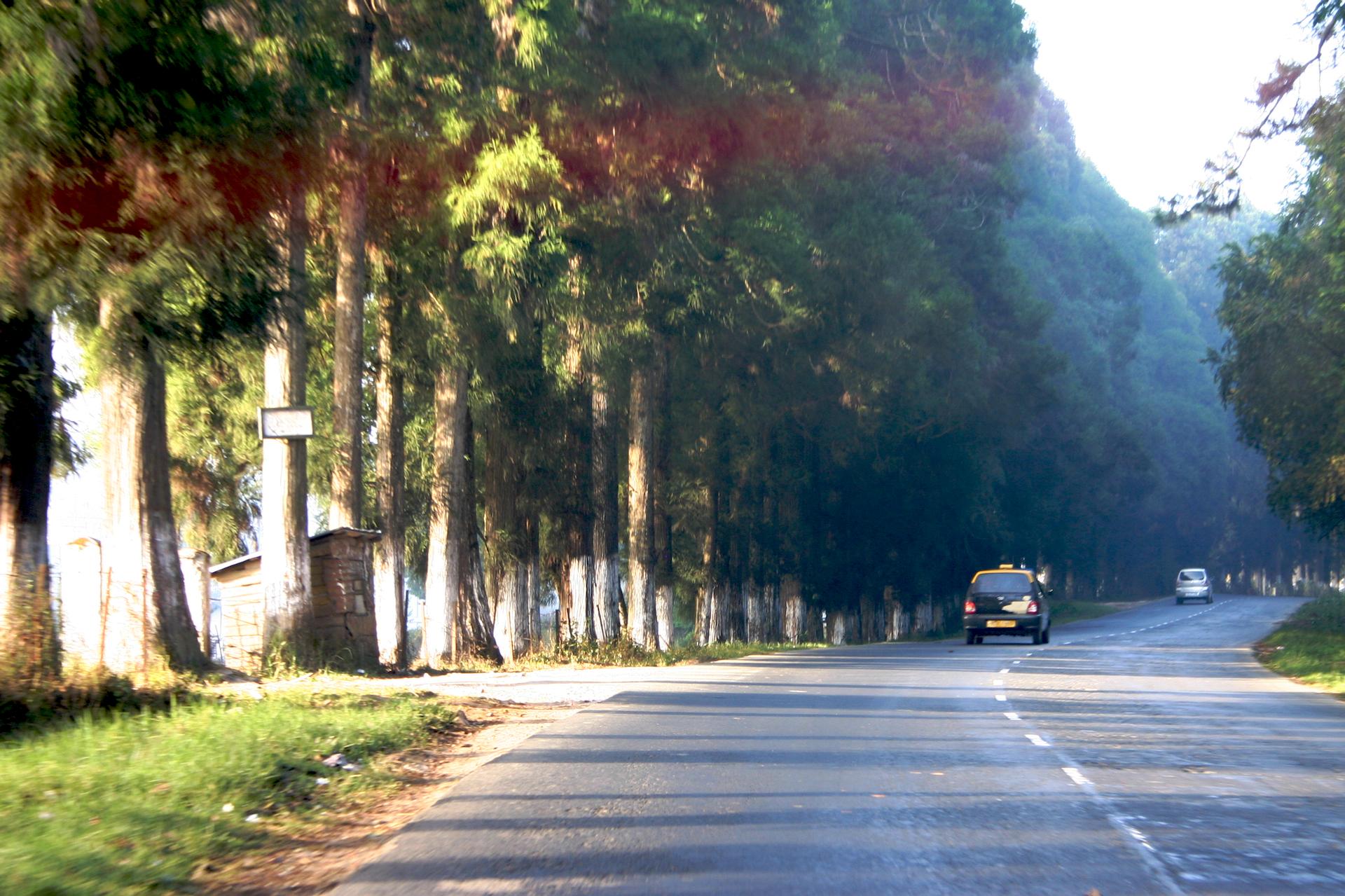 Shillong_to_Cherrapunji_(5905748490)