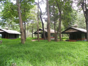 Tented_Niche_Accommodation_at_Parambikulam_Tiger_Reserve