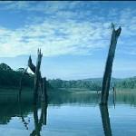 periyar_lake