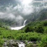 1410190885trek_to_silent_valley_national_park_western_ghats