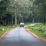 Driving_through_the_Nagerhole_National_Park