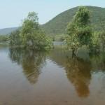 Lake_in_midst_of_Eastern_ghats_of_AP_INDIA