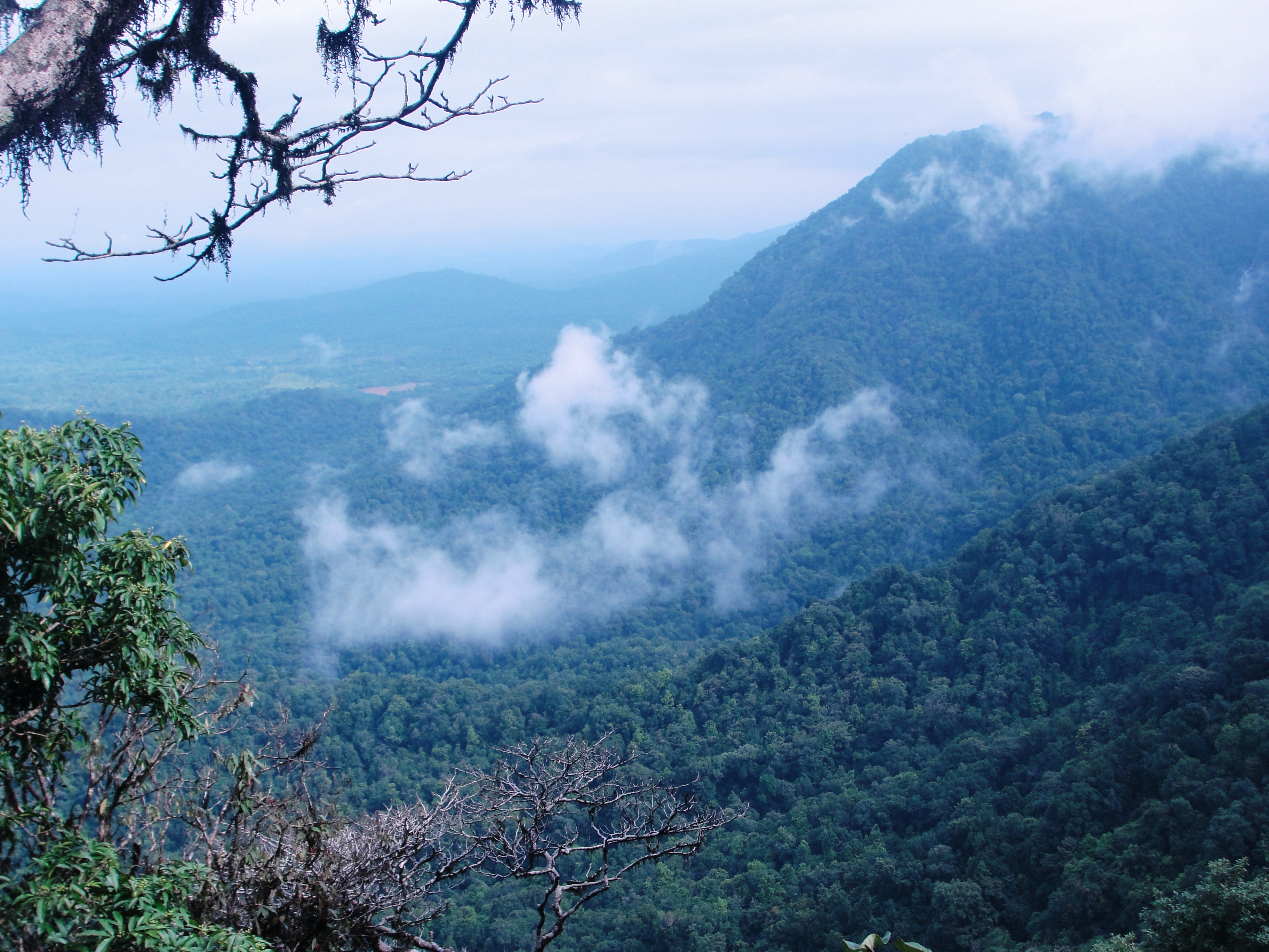 Agumbe_View_point