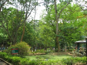 Bannerghatta_National_Park_4-24-2011_12-42-40_PM