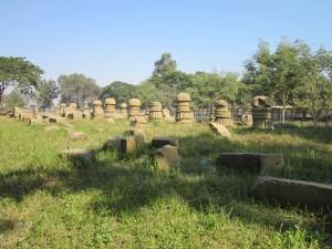 Ruins_of_Dimasa_Kingdom,_Rajbari,_Dimapur