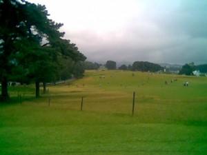 Shillong_golf_course2